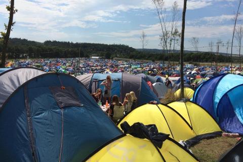 Live Camp